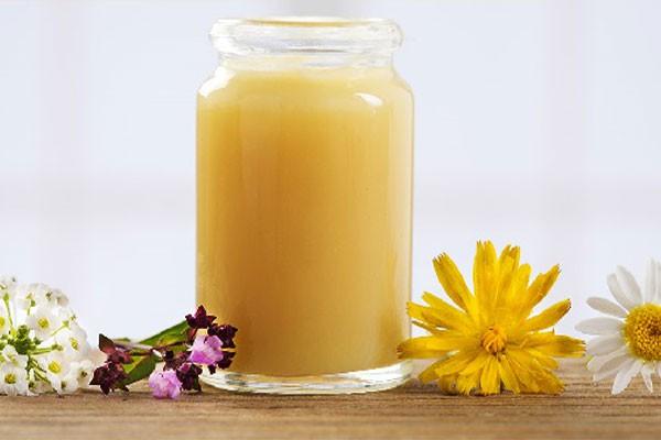 Sữa ong chúa giúp tăng cường hormone sinh dục nam